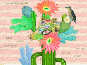 the javelina herald by Janice Taylor, Weight Loss Artist