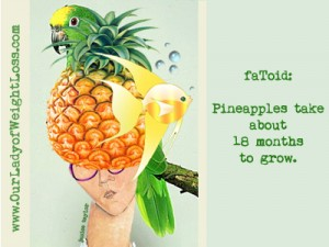 """How to Pick a Pineapple With (or Without) a Parrot on Your Head"" by Janice Taylor, Anti-Gravity Coach, Positarian, Author, Artist"